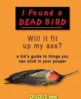 book-dead-bird-ass.jpg