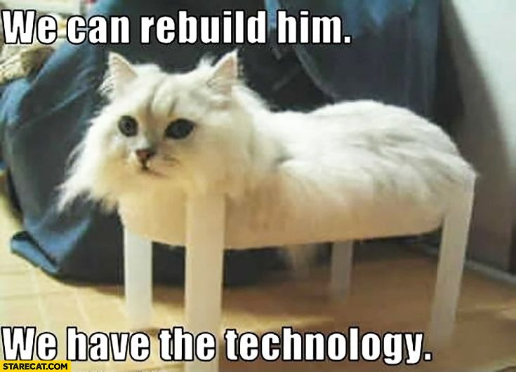 cat-without-legs-we-can-rebuild-him-we-have-the-technology.jpg