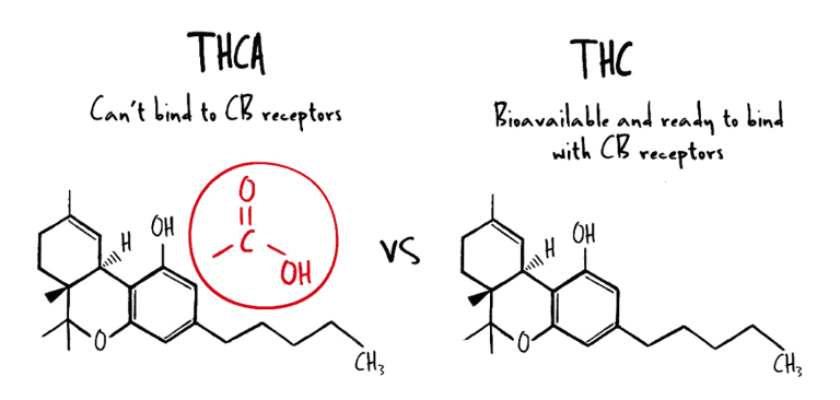 decarboxylation-thca-to-thc.png