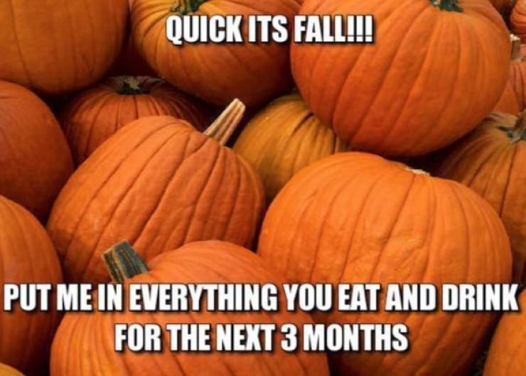 the_fall_is_almost_here_by_the_way_640_03.jpg