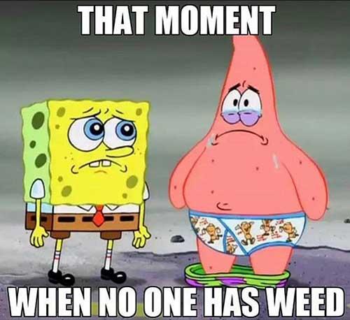 weed-memes-10.jpg