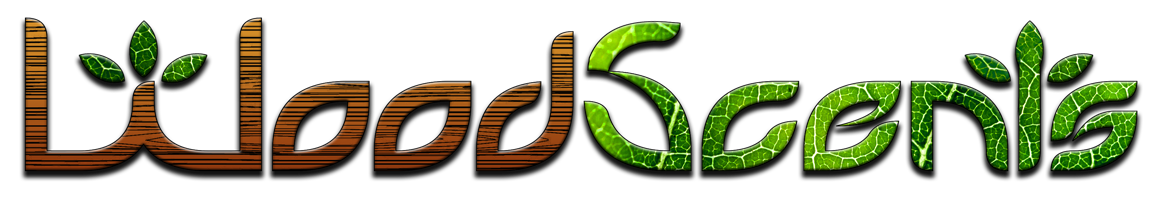 WS Horizontal Logo PNG.png